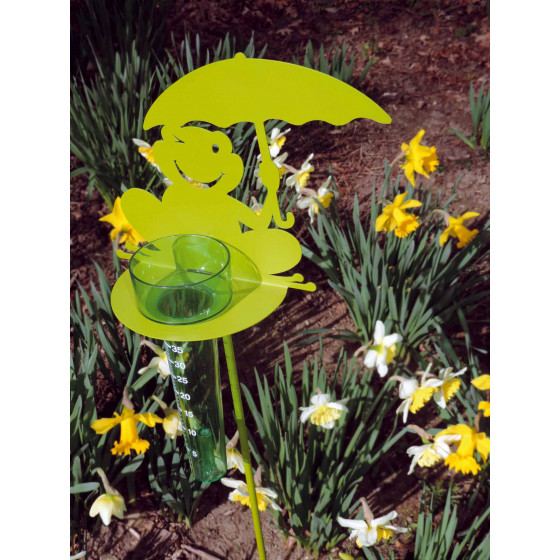 Pluviomètre décoratif grenouille vert anis