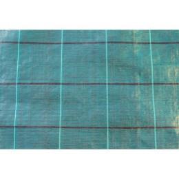Toile de paillage verte spéciale haie (largeur de 1,05 m)