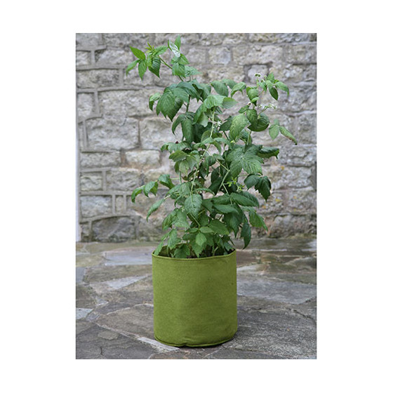 Sac de plantation en feutre 10 litres