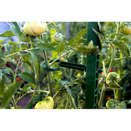 tuteur à tomate en plastique recyclé 1,80 m vert sapin