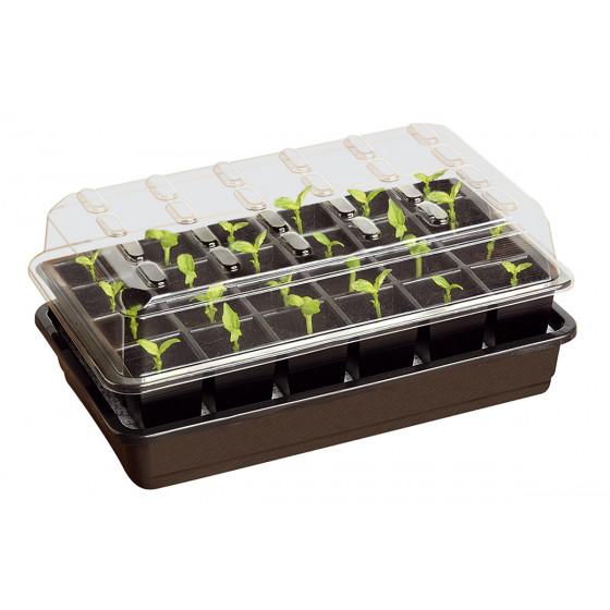 Bac à semis avec arrosage automatique