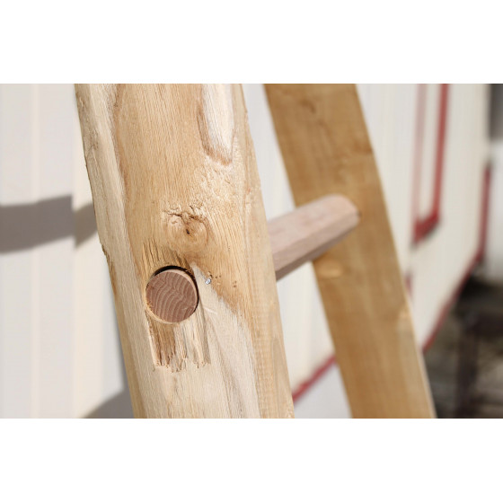 Echelle arboricole en bois 3 m